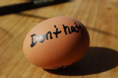 Egg of love